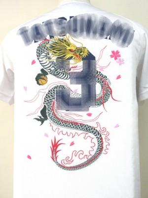 野球 応援 刺繍 ユニフォーム